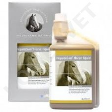 Alfavet EquiDigest liquid