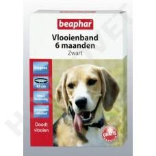 Beaphar Flohhalsband Hund Schwarz 6 Monate wirksam