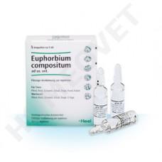 Heel Euphorbium compositum. amp 5 ml Tierhomöopathie Homeovet