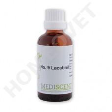 MediScent Lacabnil - Bio Tinktur bei Scheinträchtigkeit Hündin