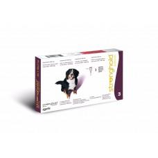 Stronghold Hund 40.1 bis 60 kg  gegen Spul-, Rundwurmer, Milben und Flöhe bei Hunden