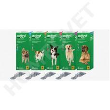 Activyl Tick Plus Lösung zum Auftropfen für Hunde