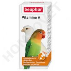 Beaphar Vit A für Vögel
