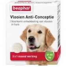 Beaphar Diagnos Hund  Anti - Conceptie gegen Flöhe