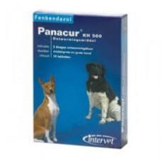 Panacur KH 500 Hund