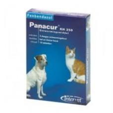 Panacur KH 250- Wurmkur Katze- Hund