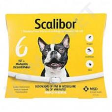Scalibor Protectorband für kleine und mittlere Hunde