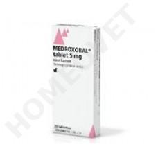 AST Katze Pille medroxoral